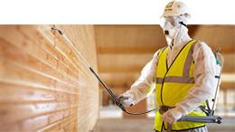 услуга по огнебиозащитной обработке деревянных конструкций